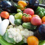 vegetables-summer